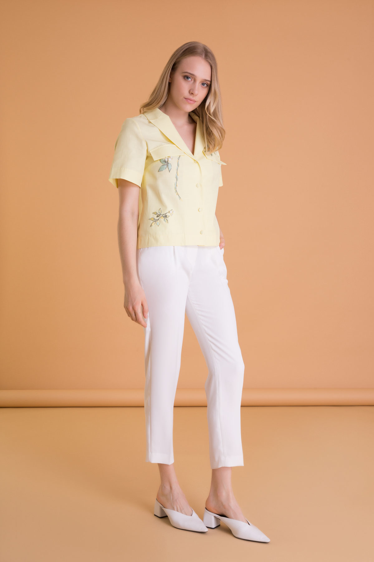 Embroidery Detailed Short Sleeve Crop Shirt